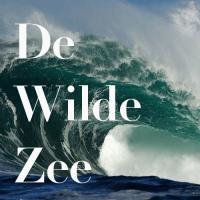 De Wilde Zee